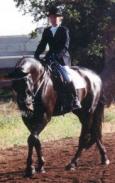 Lebewohl Ami: Ami geritten von Ursula von der Leyen an der Stanford Equestrian Center