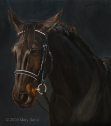 Horse portrait in oil, Painting of Ami