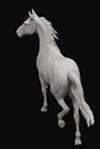 Horse Sculptures by Mary Sand : Arabian horse