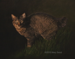 Cat portrait in oil, Painting of Bob