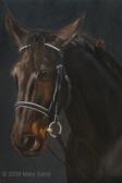 Pferdeportrait in Öl: Im Auftrag Pferdeorträts und Pferdeskulpturen von Mary Sand
