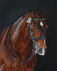 Horse portrait in oil : Levin