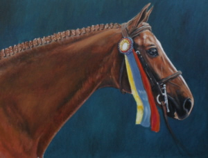 Portrait of Indy, owned by Stephanie Reggio